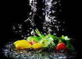 Tulipany w strugach wody — Zdjęcie stockowe