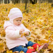 Small baby playing with yellow maple lea — Stock Photo