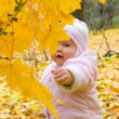 Royalty-Free Stock Photo: Small baby in forest