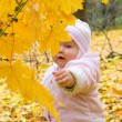 Small baby in forest — Stock Photo