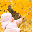 Baby with autumn branch of tree — Stock Photo