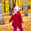 Girl on autumn forest — Stock Photo