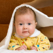 Stock Photo: Baby in blanket