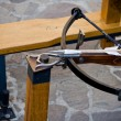 Crossbow — Stock Photo