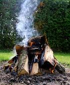 Bonfire close-up — Stock Photo