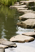 A path from the wet stones — Stock Photo