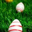 Easter eggs in green grass — Stock Photo #2461455