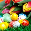 The bunch of tulips with easter eggs in green gr — Stock Photo