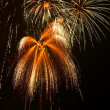 Fireworks — Stock Photo #1710135