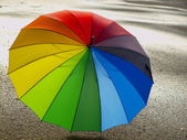 Colour umbrella on wet asphalt — Stock Photo