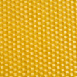 Honeycomb — Stock Photo #1626152