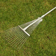 Rake — Stock Photo