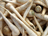 Parsnip — Stock Photo