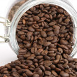 Coffee seeds - Stock Photo