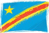 Democratic Republic of the Congo flag — Stock Vector