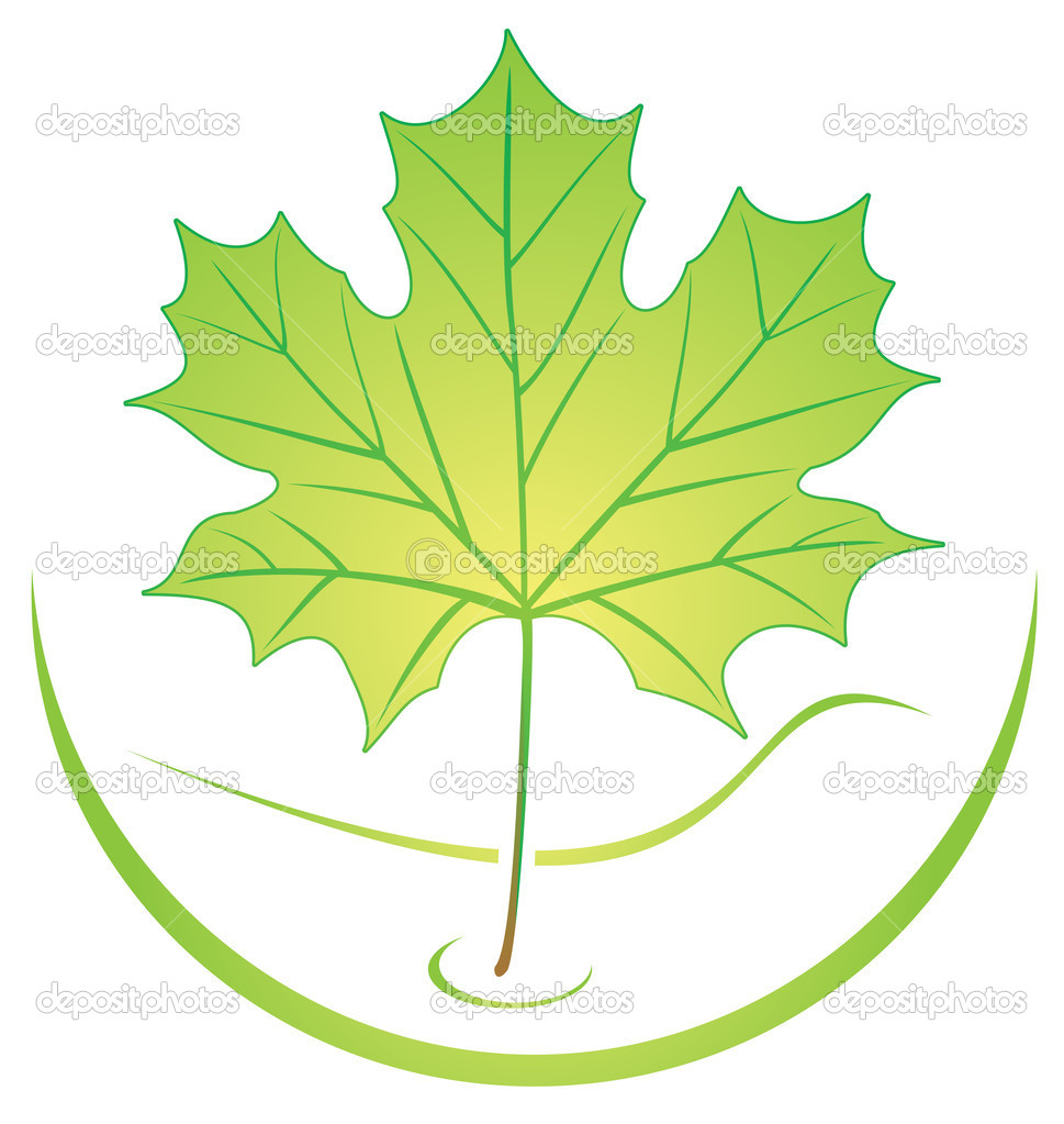 Ecological logo template with green leaf — Stock Vector #1690850