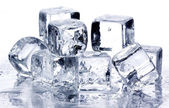 Melting ice cubes — 图库照片