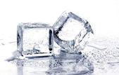 Cubetti di ghiaccio di fusione — Foto Stock