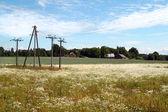 Torres de electricidad en el prado — Foto de Stock