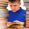 Royalty-Free Stock Photo: Boy in Library