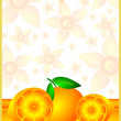 Orange background - Stock fotografie
