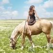 Small woman on a big horse — Stock fotografie