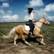Gallop — Stock Photo #1771864