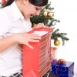 Christmas — Stock Photo #1645116