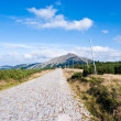 Mountain road to the top — Stock Photo #1617405