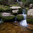 Stream in mountain — Stock Photo
