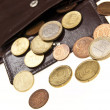 Brown leather wallet and coins — Stock Photo