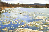Floes on the river — Stock Photo