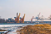 Cranes in a seaport — Stock Photo