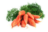 A bunch of carrots — Stock Photo
