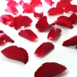 Stock Photo: Red rose petals as background