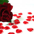 Red roses and red hearts as background — Stock Photo