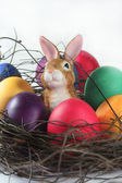 Easter basket with eggs and Easter bunny — Stock Photo