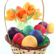 Easter basket with eggs and tulips — Stock Photo