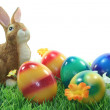 Stock Photo: Easter bunny with eggs on lawn