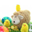 Sheep with eggs and chicks in a meadow — Stock Photo