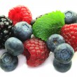 Berries — Stockfoto #2551131