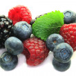 Berries — Stock Photo #2551131