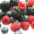 Different berries — Stock Photo #2610897