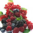 Different berries — Stock Photo #2610906