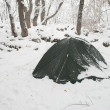 Stock Photo: Winter camp in forest