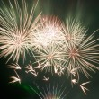 Beautiful fireworks — Stock Photo #1627573