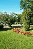 Yeşil park — Stok fotoğraf