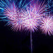 Beautiful fireworks — Stock Photo #1703493