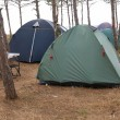 Stock Photo: Campsite in forest