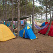 Campsite in the forest — Stock Photo #1725944